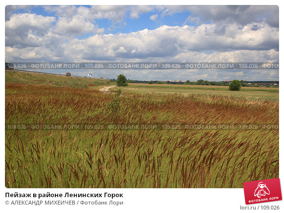Купить «Пейзаж в районе Ленинских Горок», фото № 109026, снято 21 июля 2007 г. (c) АЛЕКСАНДР МИХЕИЧЕВ / Фотобанк Лори