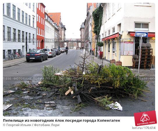Пепелище из новогодних ёлок посреди города Копенгаген, фото № 170614, снято 1 января 2008 г. (c) Георгий Ильин / Фотобанк Лори