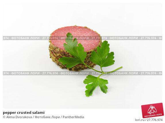 Купить «pepper crusted salami», фото № 27776974, снято 19 февраля 2019 г. (c) PantherMedia / Фотобанк Лори
