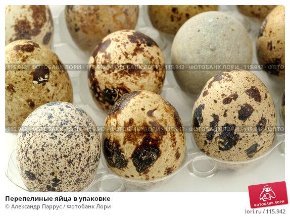 Перепелиные яйца в упаковке, фото № 115942, снято 15 сентября 2007 г. (c) Александр Паррус / Фотобанк Лори