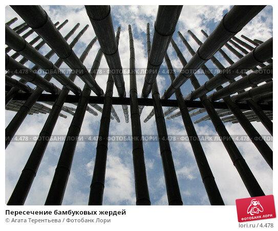 Пересечение бамбуковых жердей, фото № 4478, снято 21 мая 2006 г. (c) Агата Терентьева / Фотобанк Лори