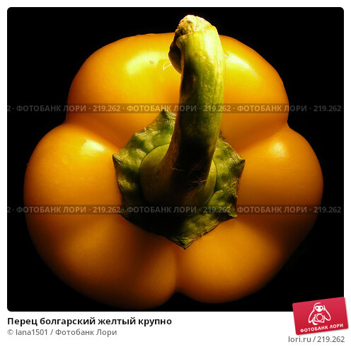 Перец болгарский желтый крупно, эксклюзивное фото № 219262, снято 19 декабря 2007 г. (c) lana1501 / Фотобанк Лори