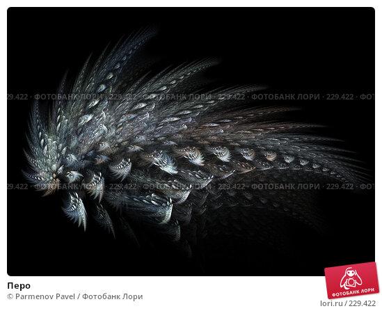 Купить «Перо», иллюстрация № 229422 (c) Parmenov Pavel / Фотобанк Лори