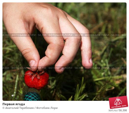 Первая ягода, фото № 58398, снято 13 июня 2007 г. (c) Анатолий Теребенин / Фотобанк Лори