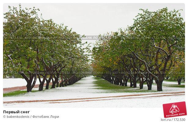 Купить «Первый снег», фото № 172530, снято 14 октября 2007 г. (c) Бабенко Денис Юрьевич / Фотобанк Лори