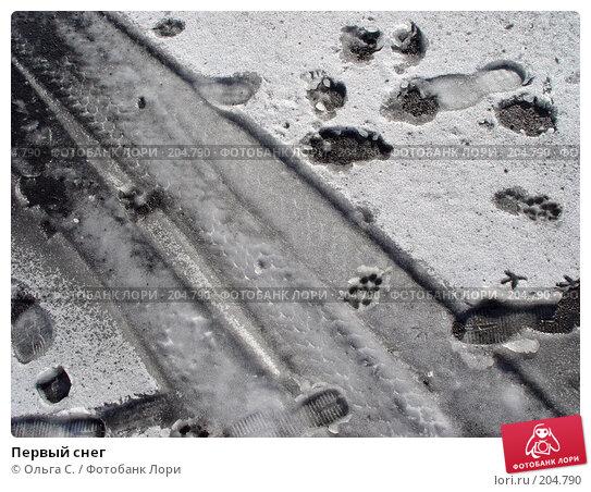 Первый снег, фото № 204790, снято 4 ноября 2004 г. (c) Ольга С. / Фотобанк Лори