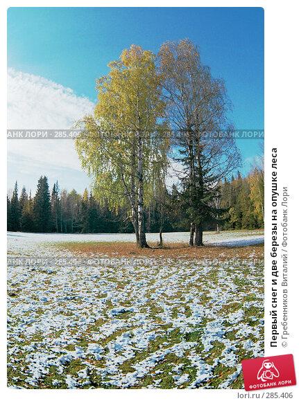 Купить «Первый снег и две березы на опушке леса», фото № 285406, снято 19 апреля 2018 г. (c) Гребенников Виталий / Фотобанк Лори