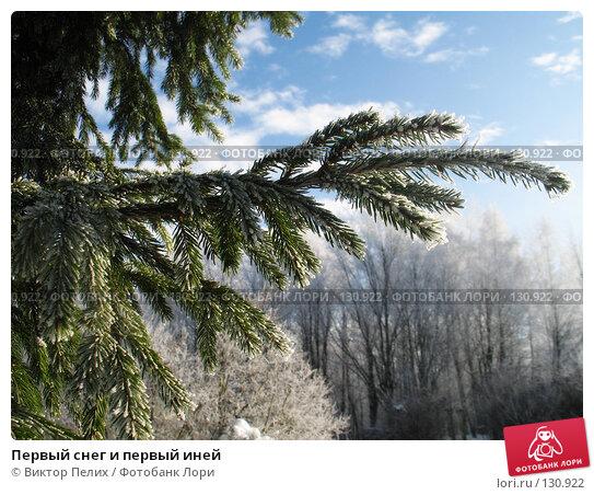 Первый снег и первый иней, фото № 130922, снято 21 ноября 2007 г. (c) Виктор Пелих / Фотобанк Лори