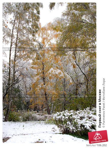 Первый снег в Москве, фото № 106202, снято 16 октября 2007 г. (c) Parmenov Pavel / Фотобанк Лори