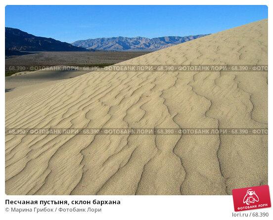 Песчаная пустыня, склон бархана, фото № 68390, снято 21 ноября 2005 г. (c) Марина Грибок / Фотобанк Лори