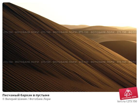 Песчаный бархан в пустыне, фото № 273150, снято 28 ноября 2007 г. (c) Валерий Шанин / Фотобанк Лори