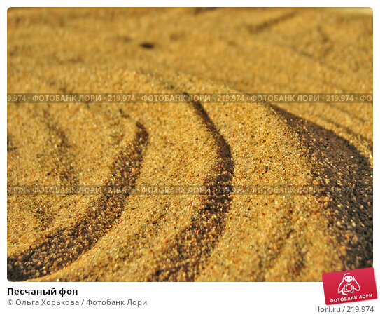 Купить «Песчаный фон», фото № 219974, снято 23 апреля 2007 г. (c) Ольга Хорькова / Фотобанк Лори