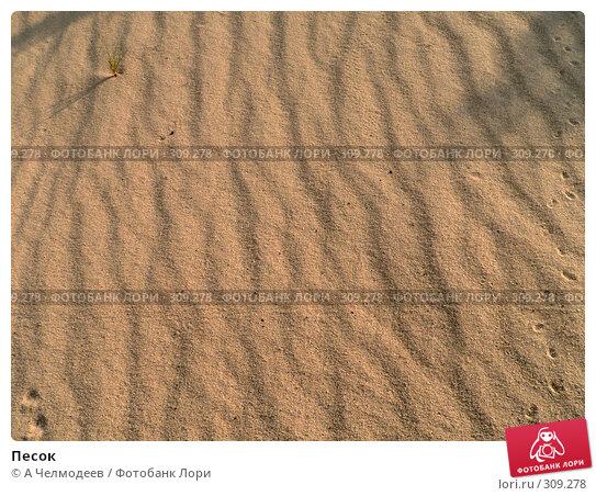 Песок, фото № 309278, снято 3 мая 2006 г. (c) A Челмодеев / Фотобанк Лори