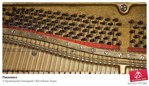 Пианино, фото № 177382, снято 3 октября 2006 г. (c) Кравецкий Геннадий / Фотобанк Лори