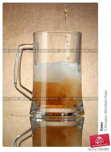 Купить «Пиво», фото № 229858, снято 22 марта 2008 г. (c) Goruppa / Фотобанк Лори