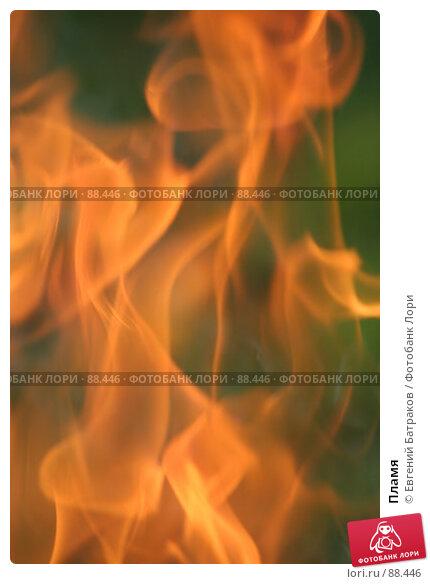 Купить «Пламя», фото № 88446, снято 12 августа 2007 г. (c) Евгений Батраков / Фотобанк Лори