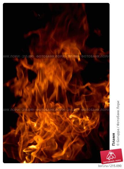 Купить «Пламя», фото № 215090, снято 25 июля 2007 г. (c) Goruppa / Фотобанк Лори