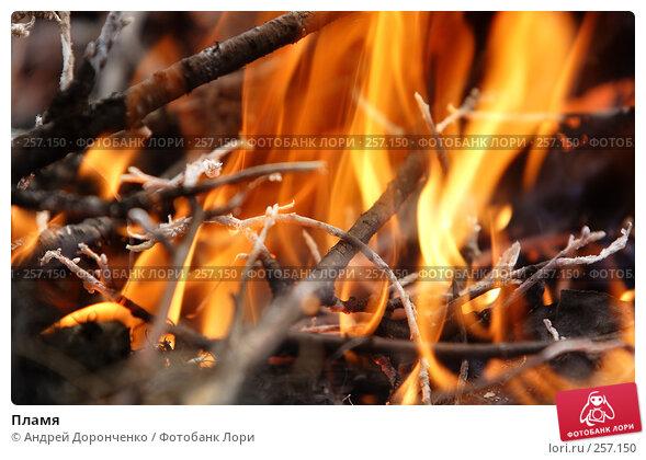 Купить «Пламя», фото № 257150, снято 19 марта 2018 г. (c) Андрей Доронченко / Фотобанк Лори