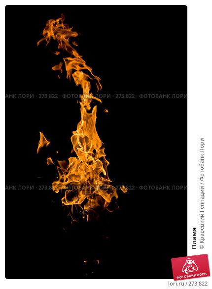 Пламя, фото № 273822, снято 14 ноября 2006 г. (c) Кравецкий Геннадий / Фотобанк Лори