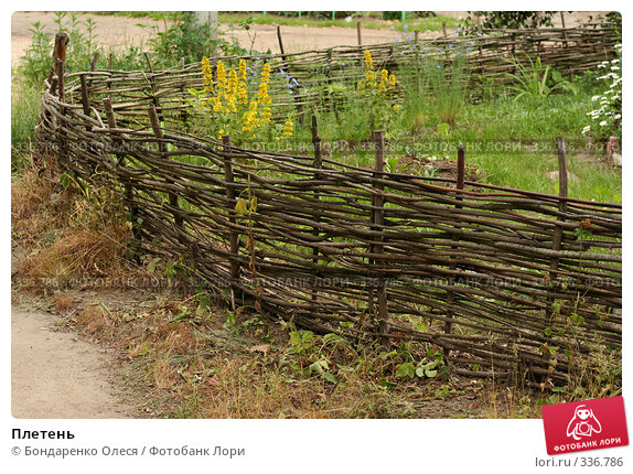 Плетень, фото № 336786, снято 27 июня 2008 г. (c) Бондаренко Олеся / Фотобанк Лори