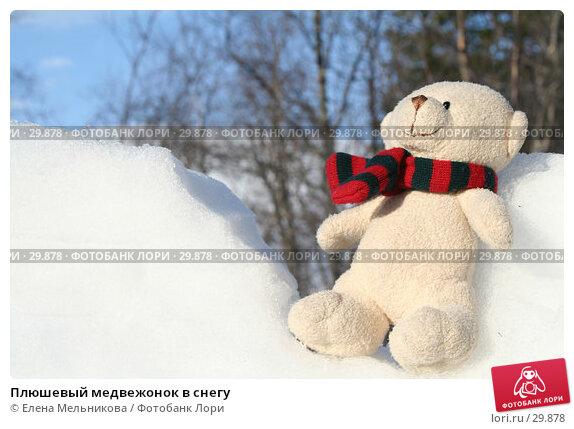 Плюшевый медвежонок в снегу, фото № 29878, снято 28 марта 2007 г. (c) Елена Мельникова / Фотобанк Лори