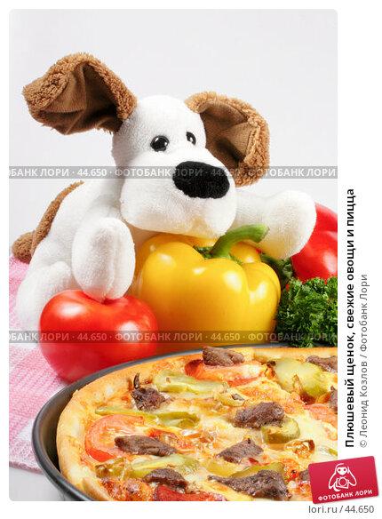Плюшевый щенок, свежие овощи и пицца, фото № 44650, снято 17 мая 2007 г. (c) Леонид Козлов / Фотобанк Лори