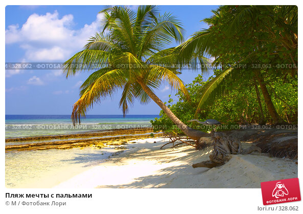 Пляж мечты с пальмами, фото № 328062, снято 20 января 2017 г. (c) Михаил / Фотобанк Лори