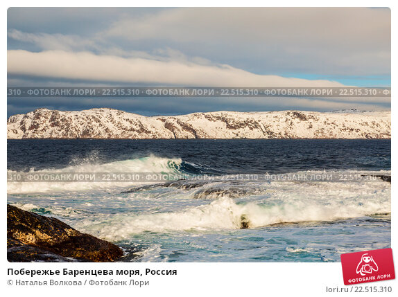 Побережье Баренцева моря, Россия, фото № 22515310, снято 11 марта 2016 г. (c) Наталья Волкова / Фотобанк Лори