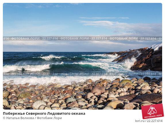 Побережье Северного Ледовитого океана, фото № 22227614, снято 11 марта 2016 г. (c) Наталья Волкова / Фотобанк Лори