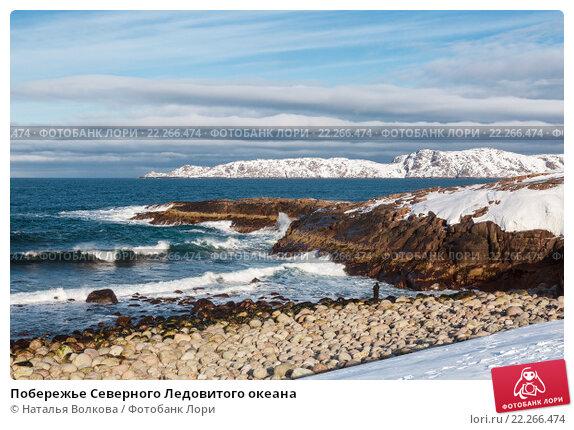 Побережье Северного Ледовитого океана, фото № 22266474, снято 11 марта 2016 г. (c) Наталья Волкова / Фотобанк Лори