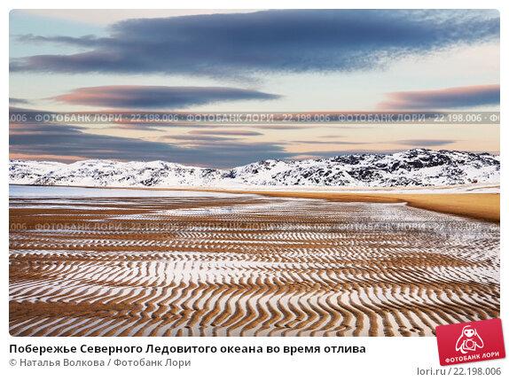 Побережье Северного Ледовитого океана во время отлива. Стоковое фото, фотограф Наталья Волкова / Фотобанк Лори