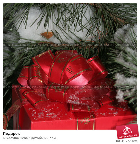 Подарок, фото № 58694, снято 30 ноября 2006 г. (c) Vdovina Elena / Фотобанк Лори