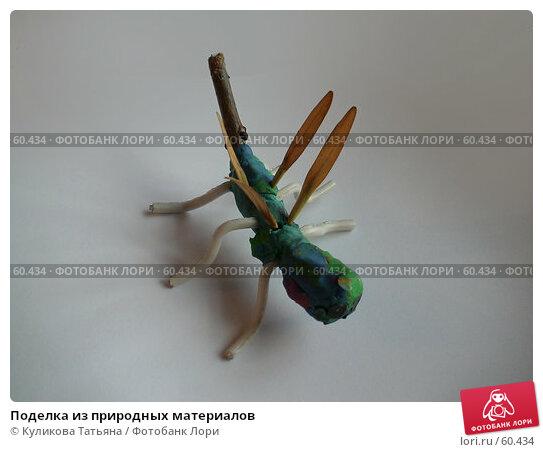 Поделка из природных материалов, фото № 60434, снято 3 октября 2006 г. (c) Куликова Татьяна / Фотобанк Лори