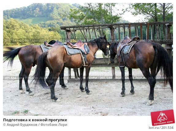 Подготовка к конной прогулке, фото № 201534, снято 1 августа 2007 г. (c) Андрей Бурдюков / Фотобанк Лори