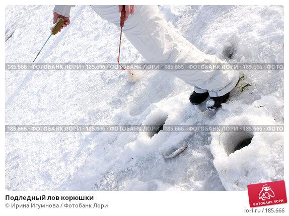 Подледный лов корюшки, фото № 185666, снято 2 января 2008 г. (c) Ирина Игумнова / Фотобанк Лори