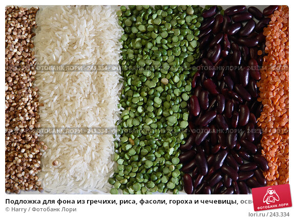 Подложка для фона из гречихи, риса, фасоли, гороха и чечевицы, освещенная заходящим солнцем, фото № 243334, снято 13 июля 2007 г. (c) Harry / Фотобанк Лори