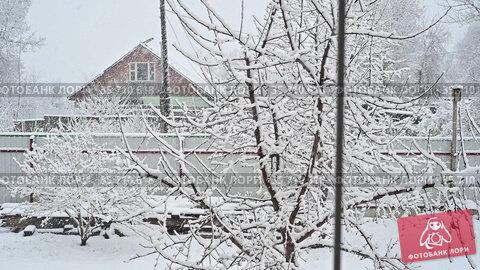 Подмосковье. Обильный снегопад весной, в конце апреля. Стоковое видео, видеограф Владимир Литвинов / Фотобанк Лори