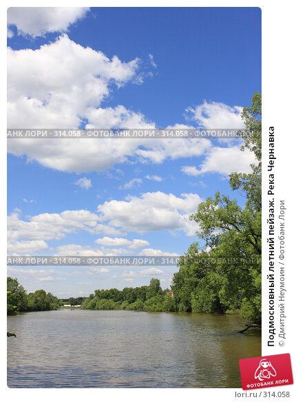 Подмосковный летний пейзаж. Река Чернавка, эксклюзивное фото № 314058, снято 2 июня 2008 г. (c) Дмитрий Неумоин / Фотобанк Лори