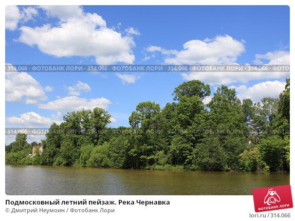 Подмосковный летний пейзаж. Река Чернавка, эксклюзивное фото № 314066, снято 2 июня 2008 г. (c) Дмитрий Неумоин / Фотобанк Лори