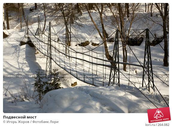 Подвесной мост, фото № 264082, снято 11 февраля 2008 г. (c) Игорь Жоров / Фотобанк Лори