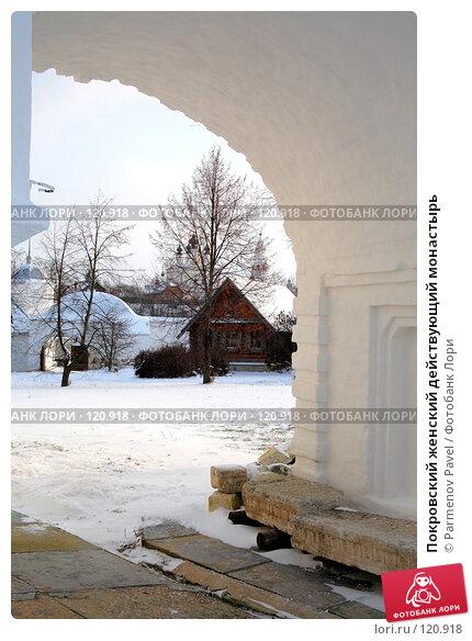 Покровский женский действующий монастырь, фото № 120918, снято 18 ноября 2007 г. (c) Parmenov Pavel / Фотобанк Лори