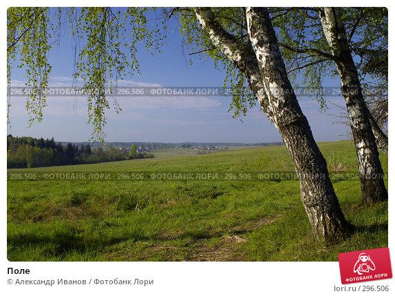 Поле, фото № 296506, снято 10 мая 2008 г. (c) Александр Иванов / Фотобанк Лори