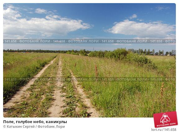 Поле, голубое небо, каникулы, фото № 141658, снято 24 июня 2007 г. (c) Катыкин Сергей / Фотобанк Лори
