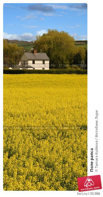 Поле рапса, фото № 33986, снято 18 апреля 2007 г. (c) Tamara Kulikova / Фотобанк Лори