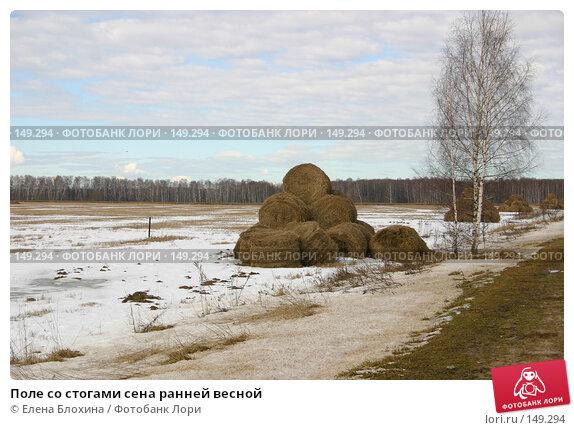 Поле со стогами сена ранней весной, фото № 149294, снято 16 марта 2007 г. (c) Елена Блохина / Фотобанк Лори