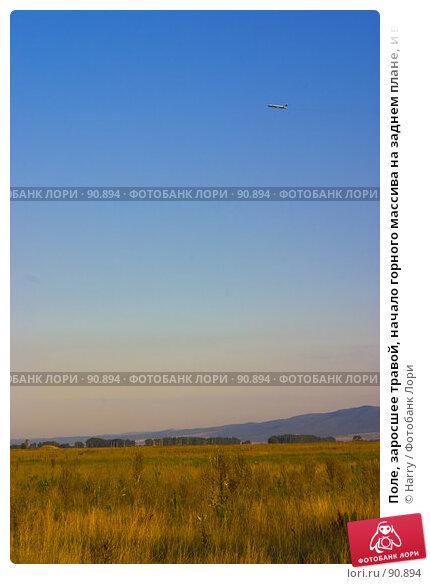 Поле, заросшее травой, начало горного массива на заднем плане, и взлетающий самолет в небе, фото № 90894, снято 17 августа 2007 г. (c) Harry / Фотобанк Лори