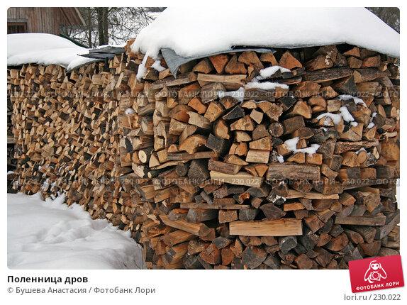 Поленница дров, фото № 230022, снято 2 февраля 2008 г. (c) Бушева Анастасия / Фотобанк Лори