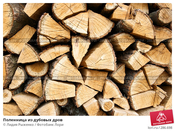 Поленница из дубовых дров, фото № 286698, снято 1 мая 2008 г. (c) Лидия Рыженко / Фотобанк Лори