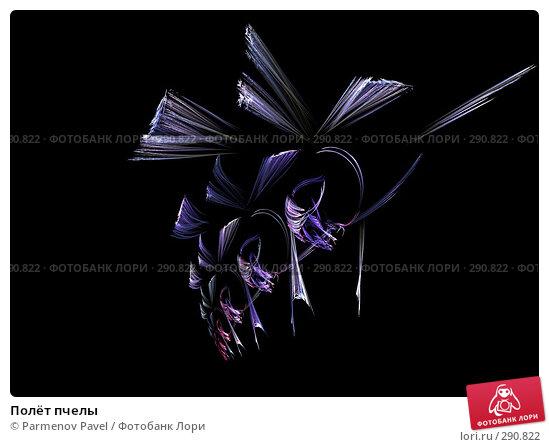 Полёт пчелы, иллюстрация № 290822 (c) Parmenov Pavel / Фотобанк Лори