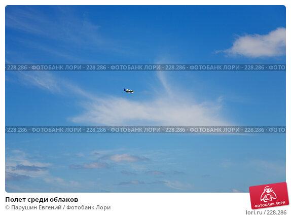 Полет среди облаков, фото № 228286, снято 25 июля 2017 г. (c) Парушин Евгений / Фотобанк Лори